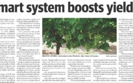 Smart system boosts yields