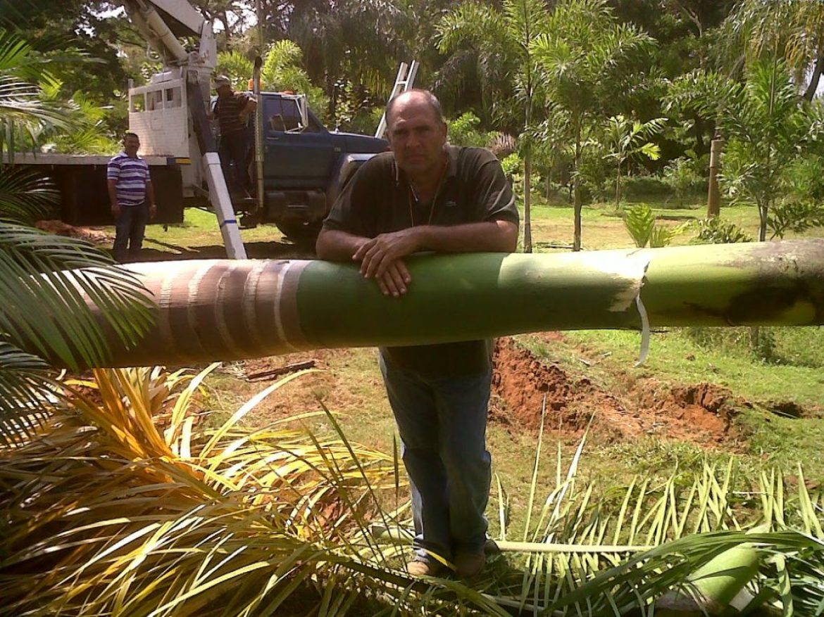 Venezuela Palm Plantation – Iron Scale Issue Rectified