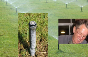 Dubai Turfarm UAE – turf growth on saline water 15,000 ppm – Hydrosmart