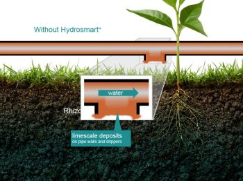 Without Hydrosmart