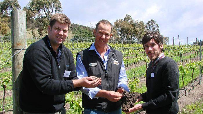 Pooley Wines - Healthy Soil