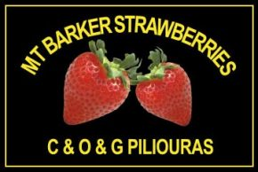 Mt. Barker Strawberries